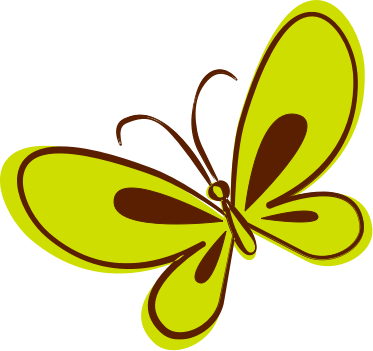 Brown and Green Butterfly